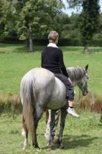 centre equestre zaventem